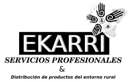 Servicios profesionales: diseño web y marketing digital en Vitoria